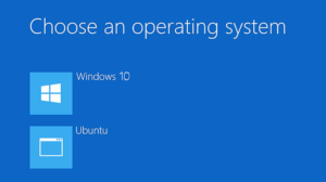 How to dual boot windows 10 and Linux