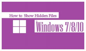 Show Hidden Files | Show Hidden Files Windows 10 | Show Files